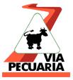 viapec_logo